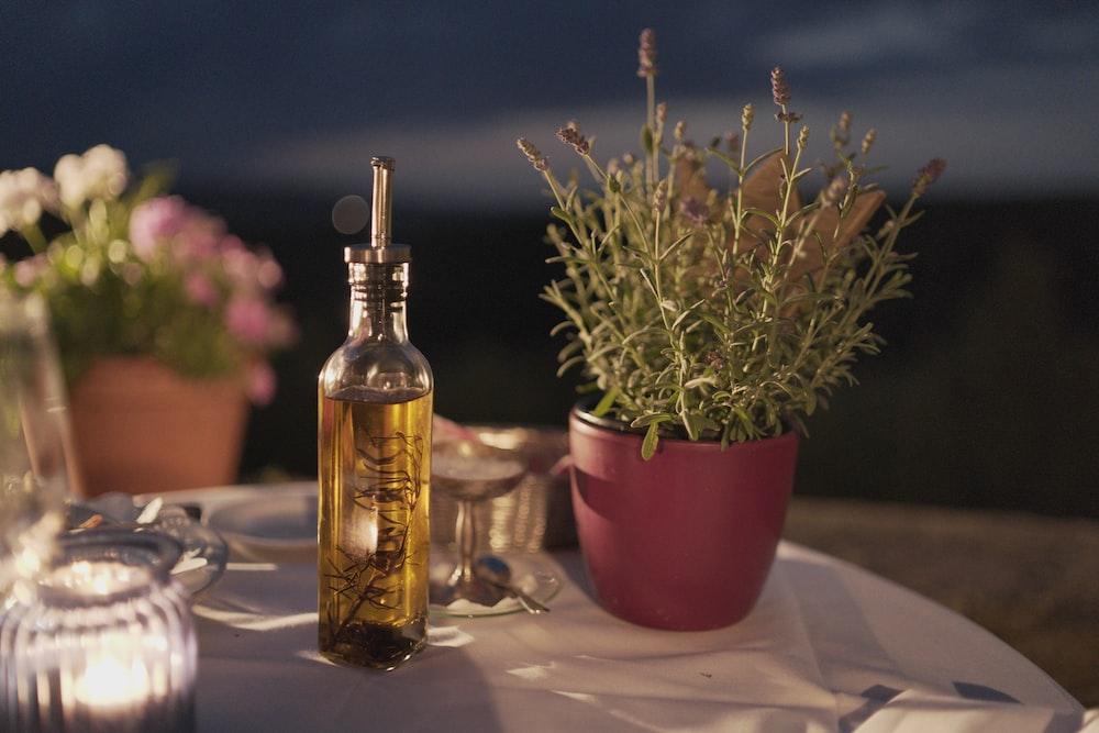 clear glass bottle beside plant