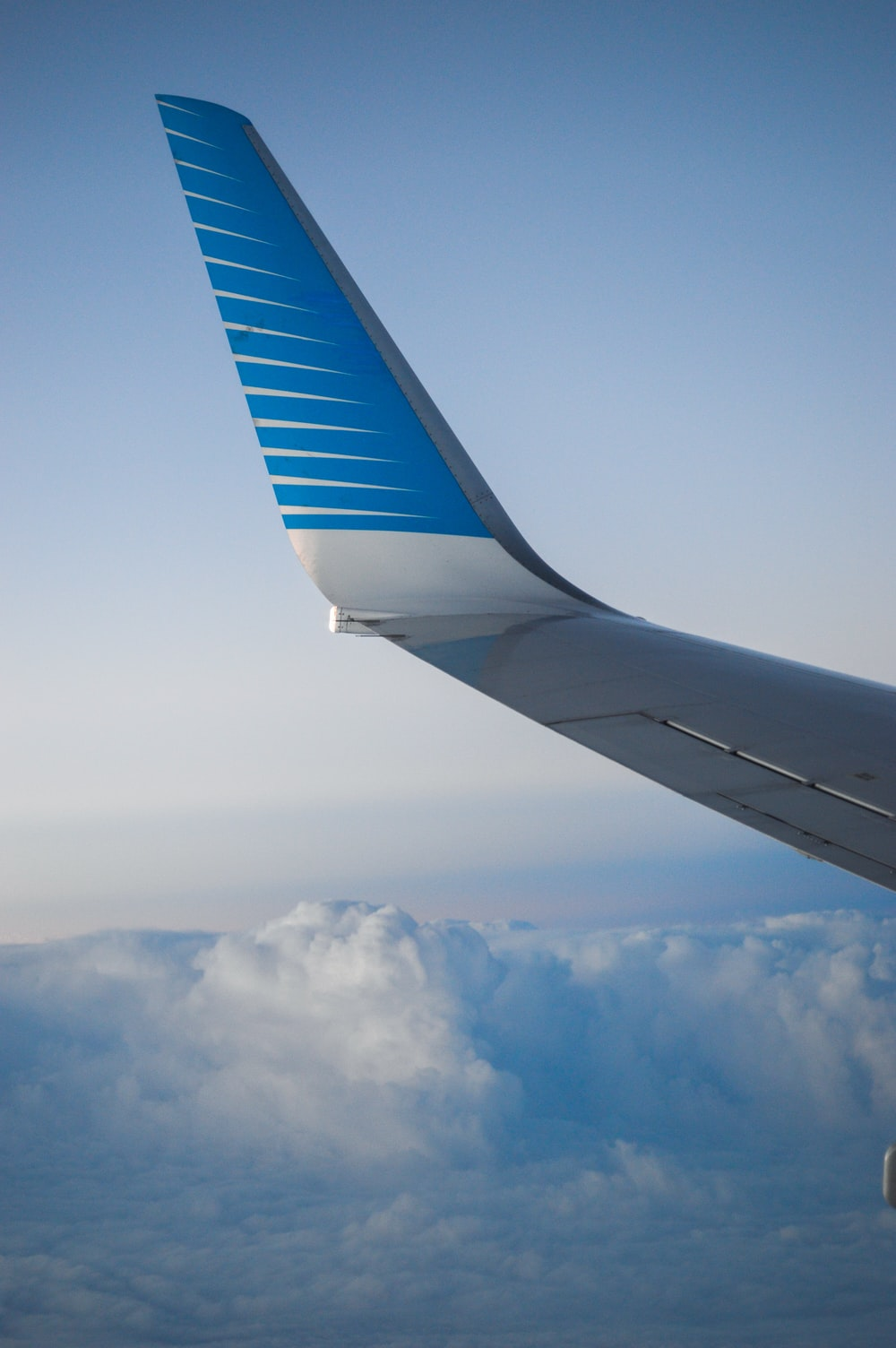airplane's blue and gray left wing