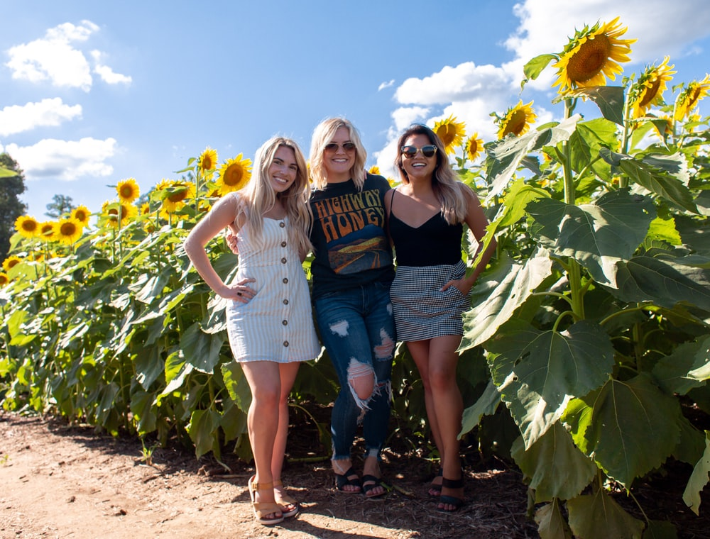 three women standing at the sunflower farm during daytime