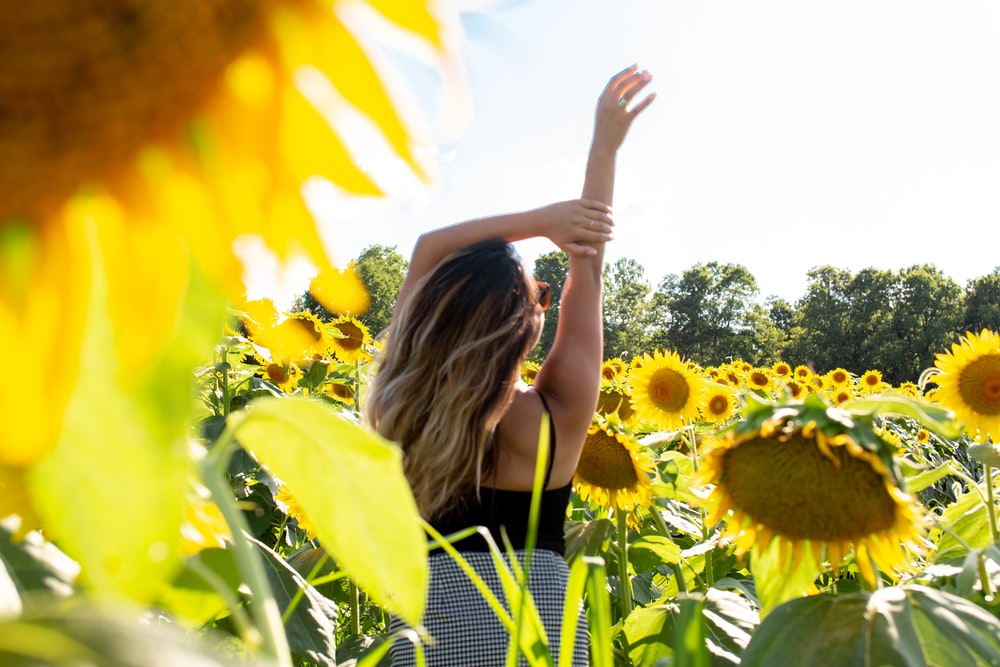 woman standing and raising her hand on sunflower field during daytime