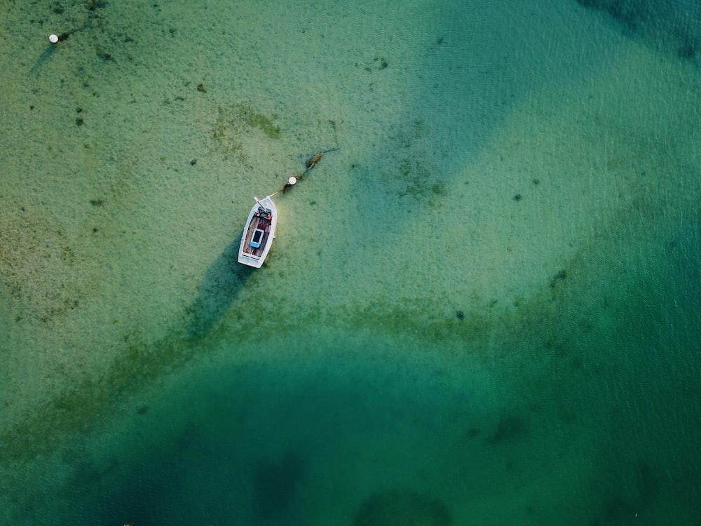 white canoe on water
