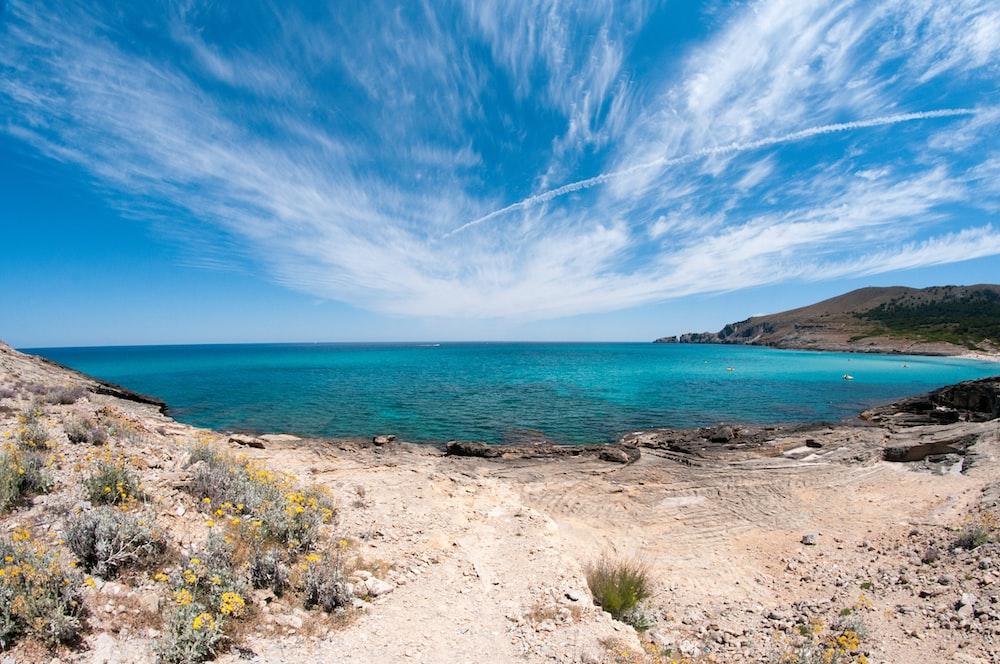 shore and ocean under blue sky