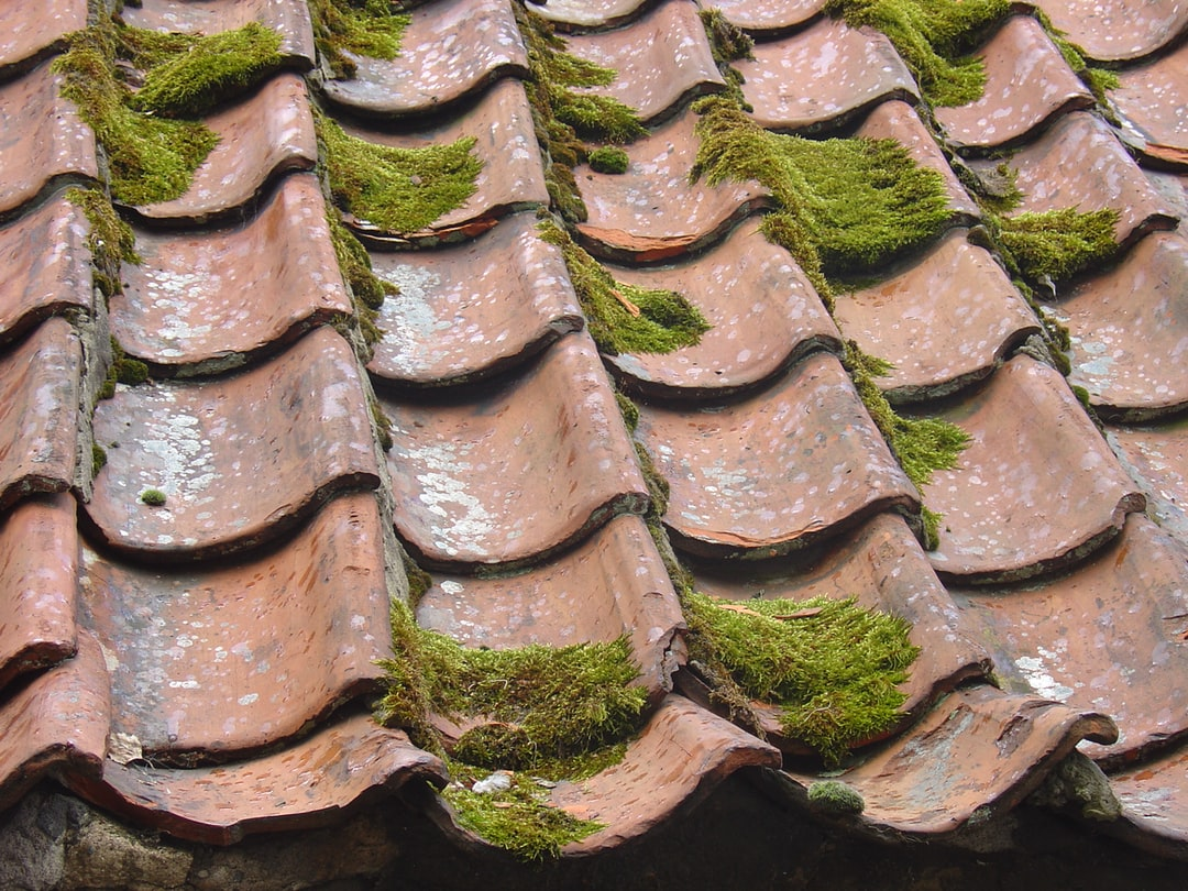 The Importance Of Residential Roof Cleaning, Explained