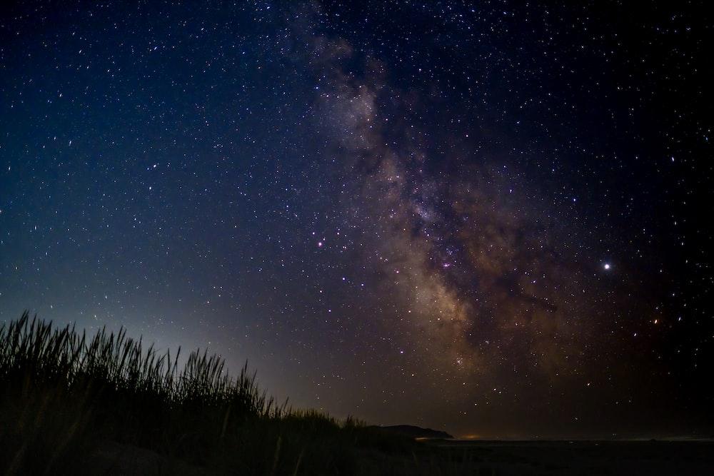 white stars during nighttime