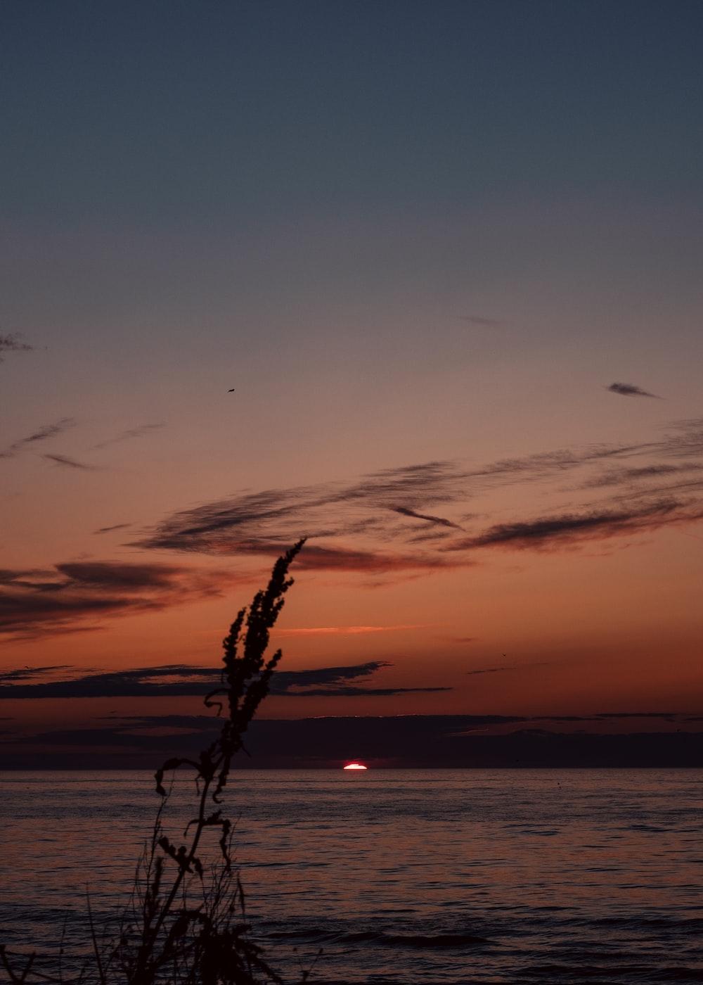 golden hour on sea