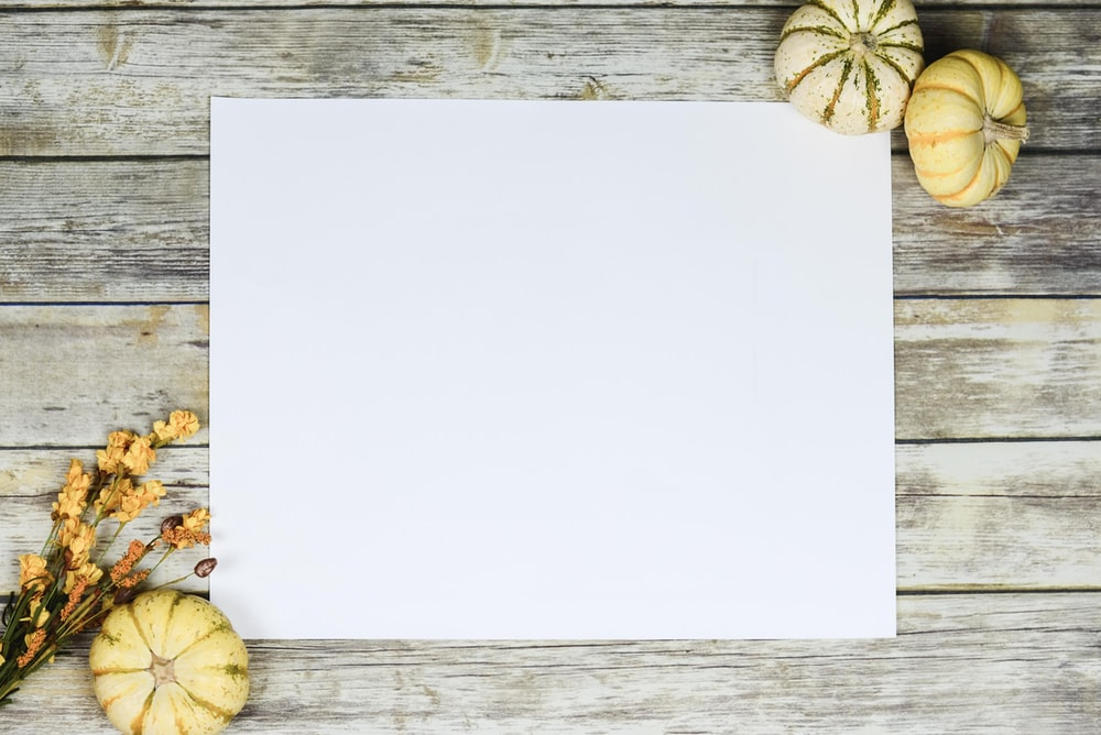 white paper close-up photography