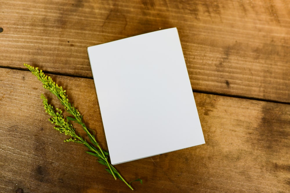 white paper beside green plant on wooden surface
