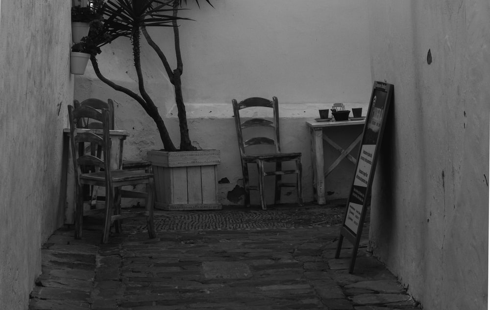 grayscale photography of wooden ladderback chairs and potted plant