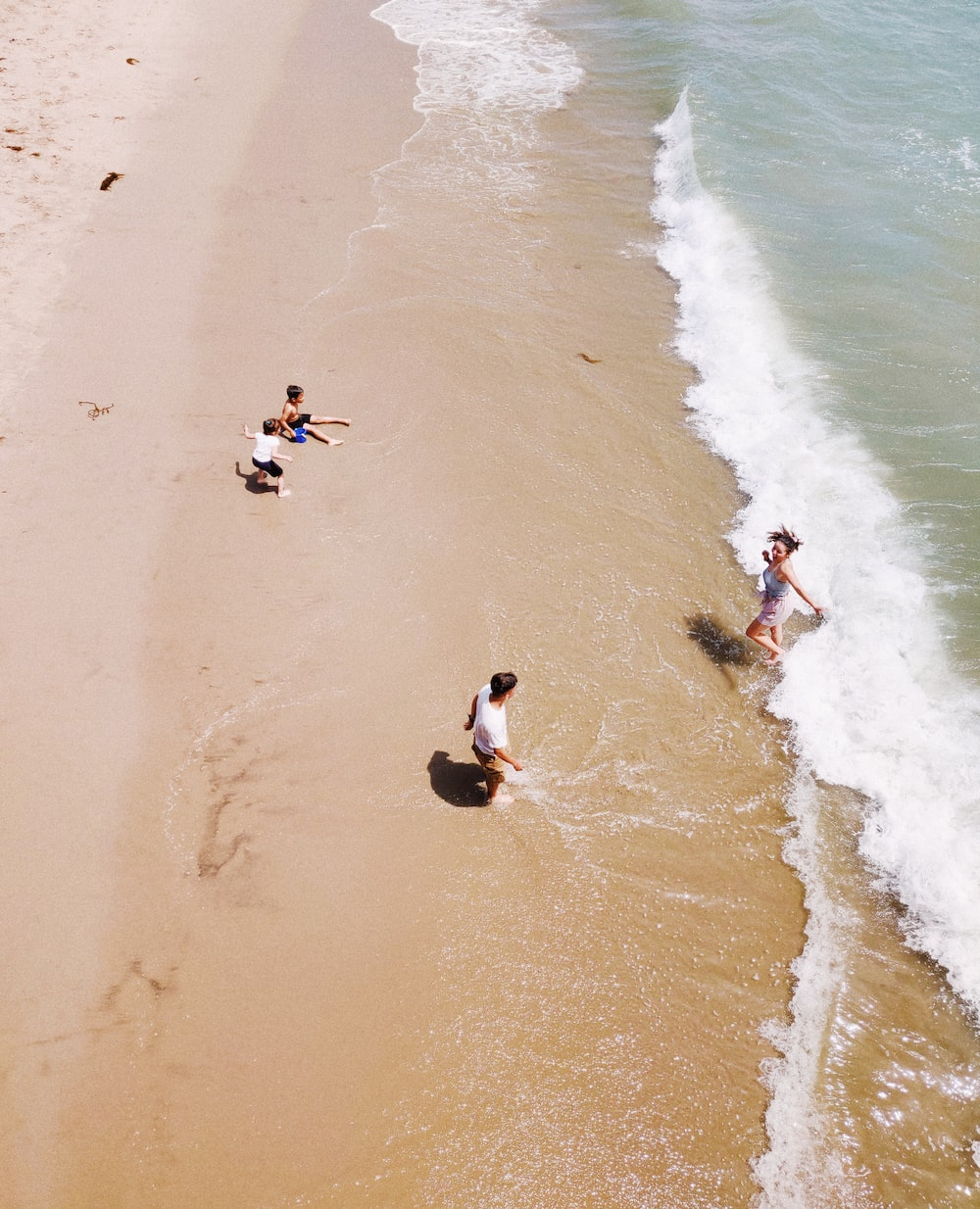 family of four playing along the seashore at daytime