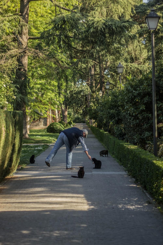 man feeding cat on alley