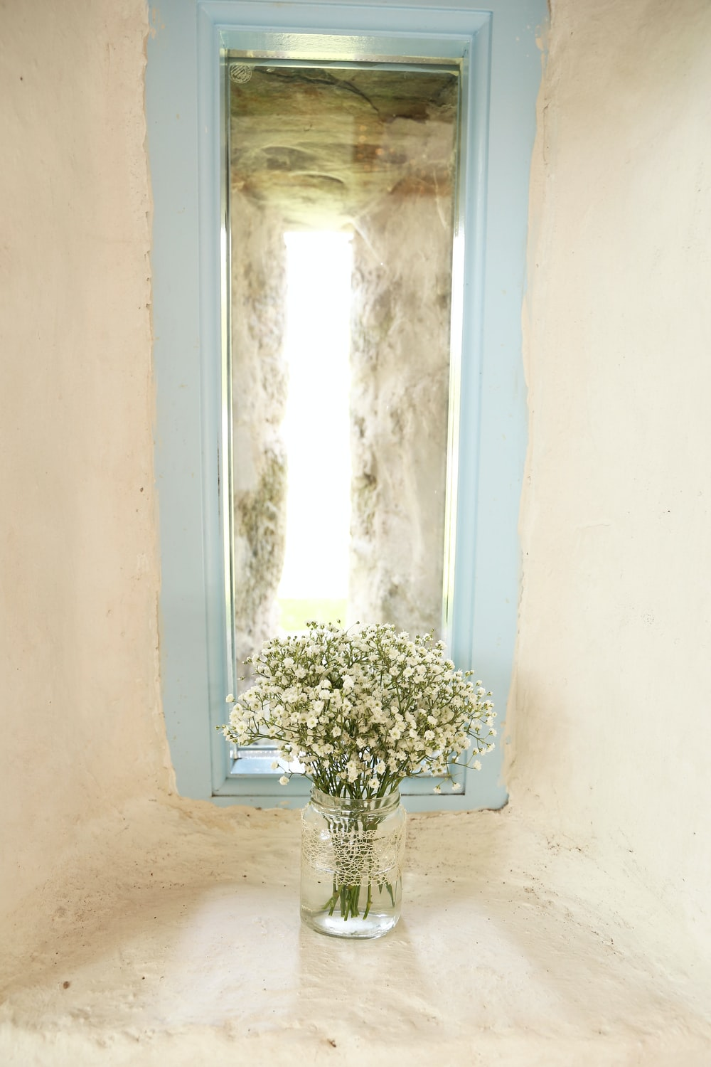 white Baby's Breath flower in vase