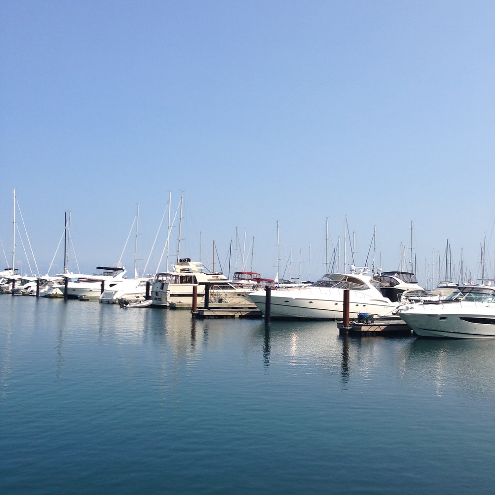 white yachts in pier