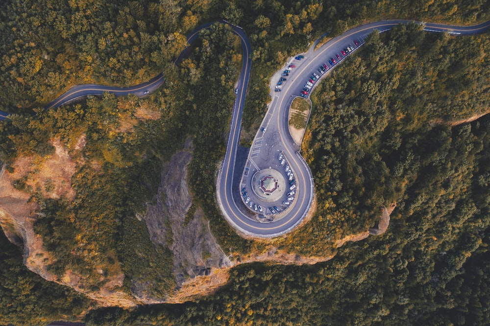 grey road and trees in aerial photography