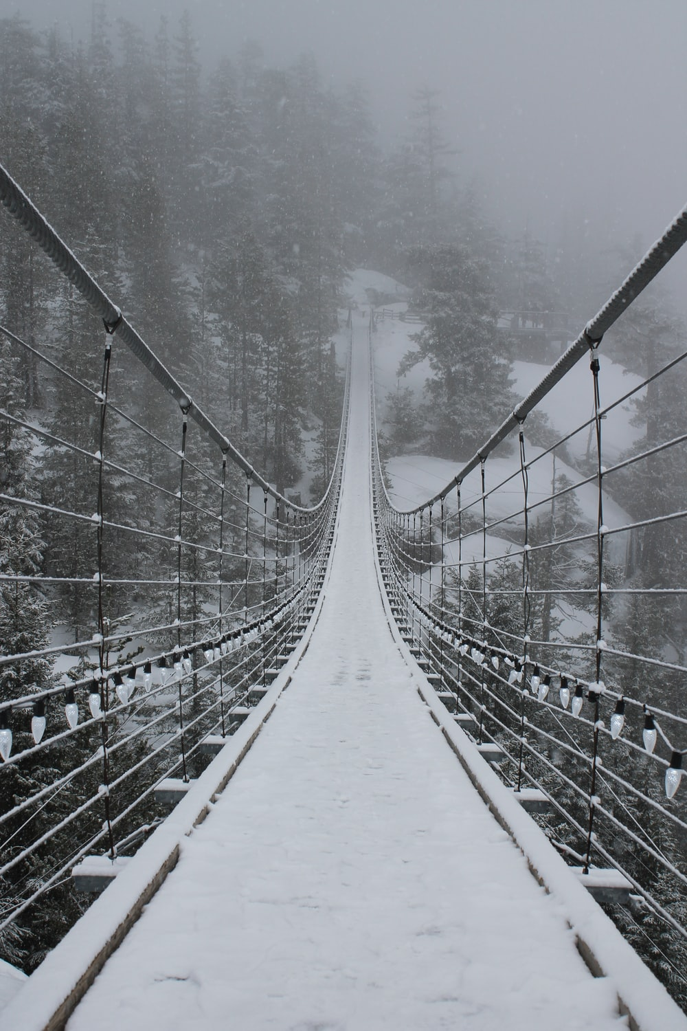 hanging bridge on snow