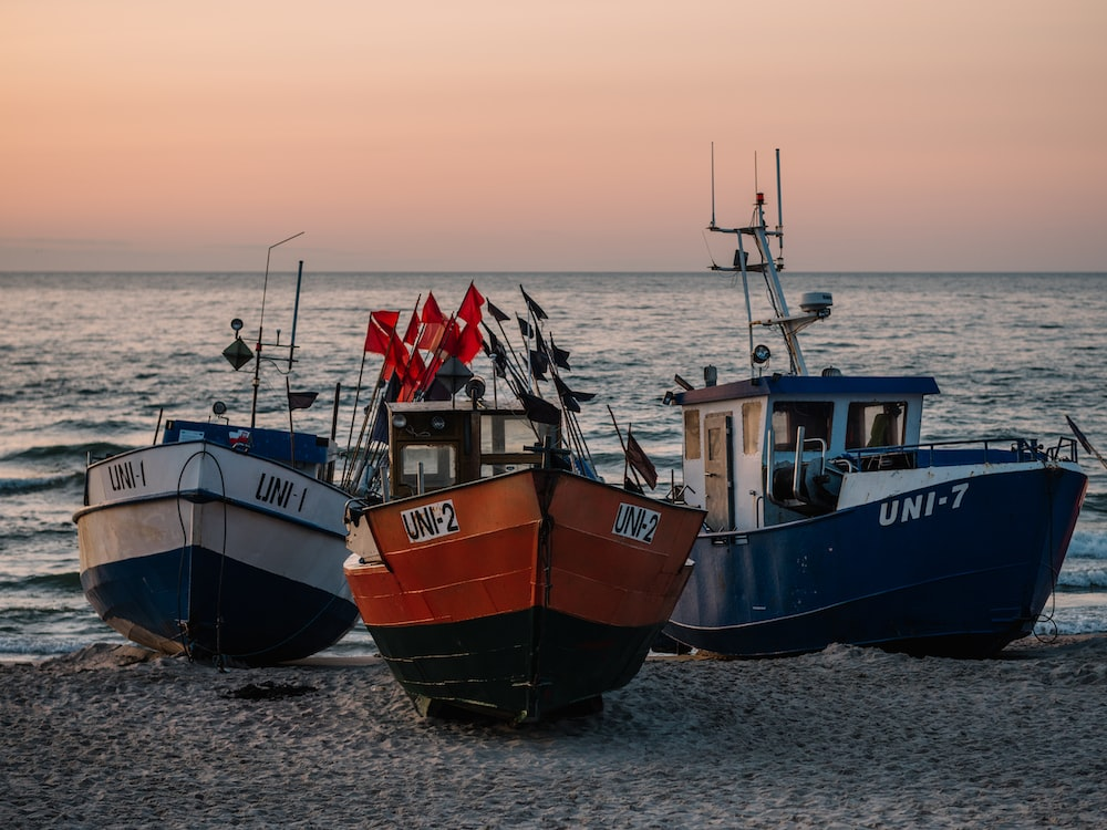 three blue, white, and red fishing vessels on seashore