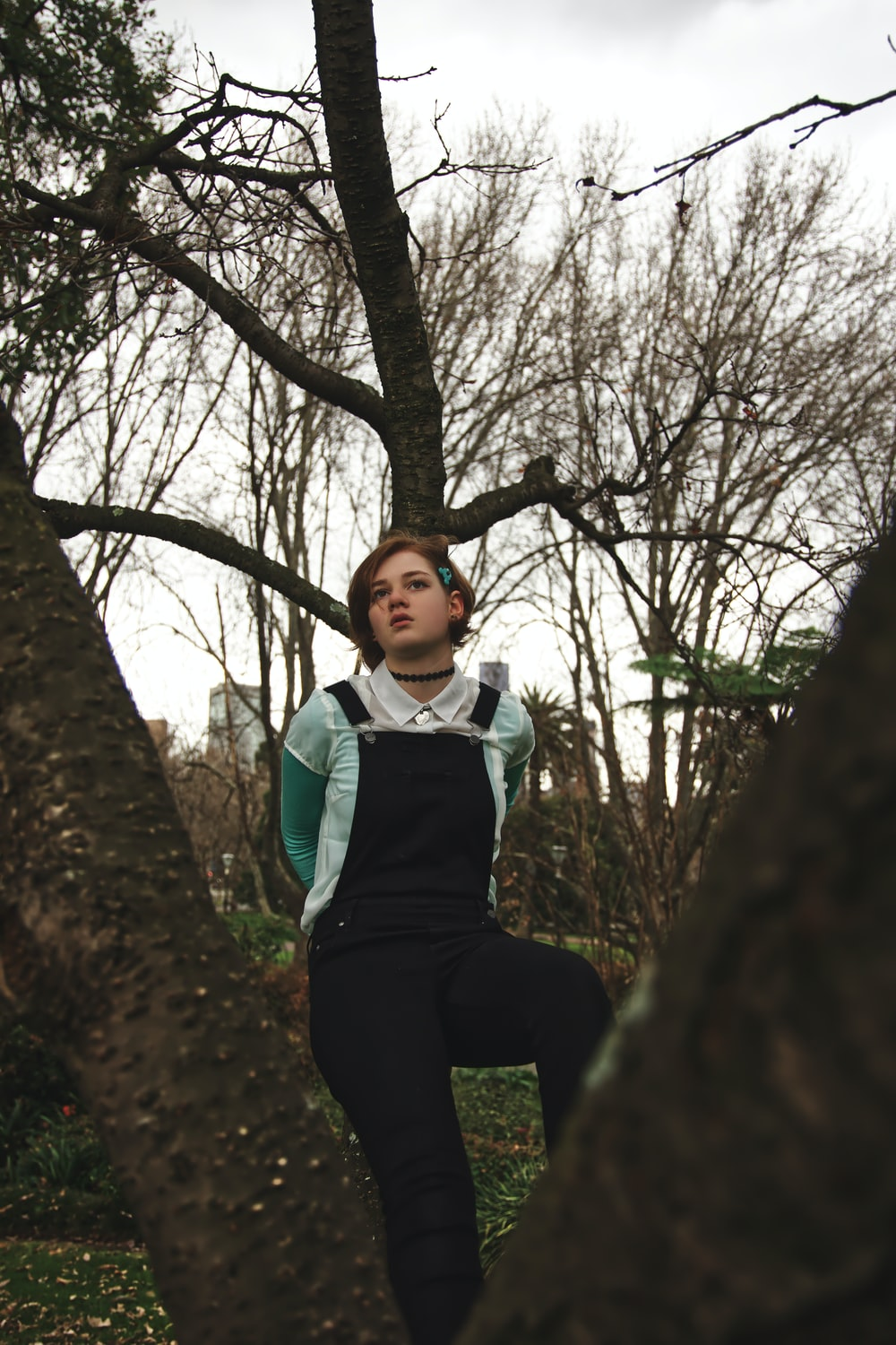 woman standing on tree