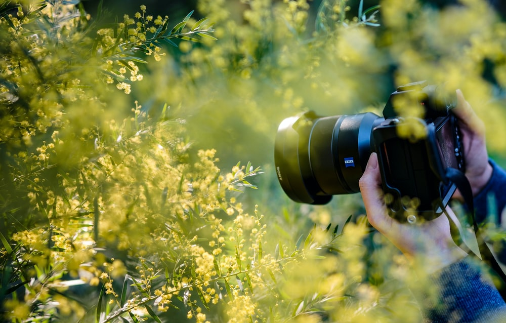 Photography Business Ideas In Kerala