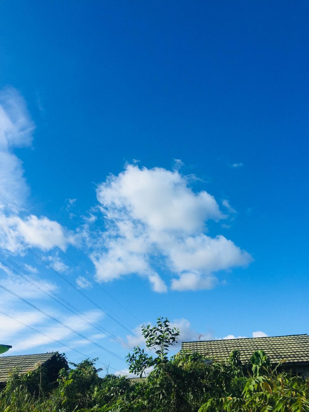 white cumulus cloud
