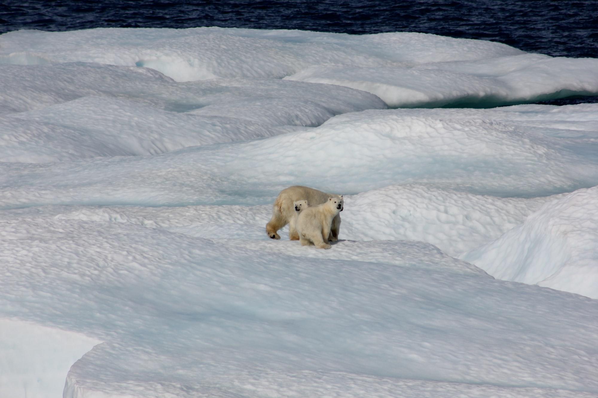 地球温暖化の続き