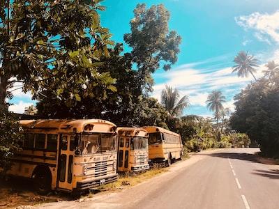 yellow bus tahiti teams background