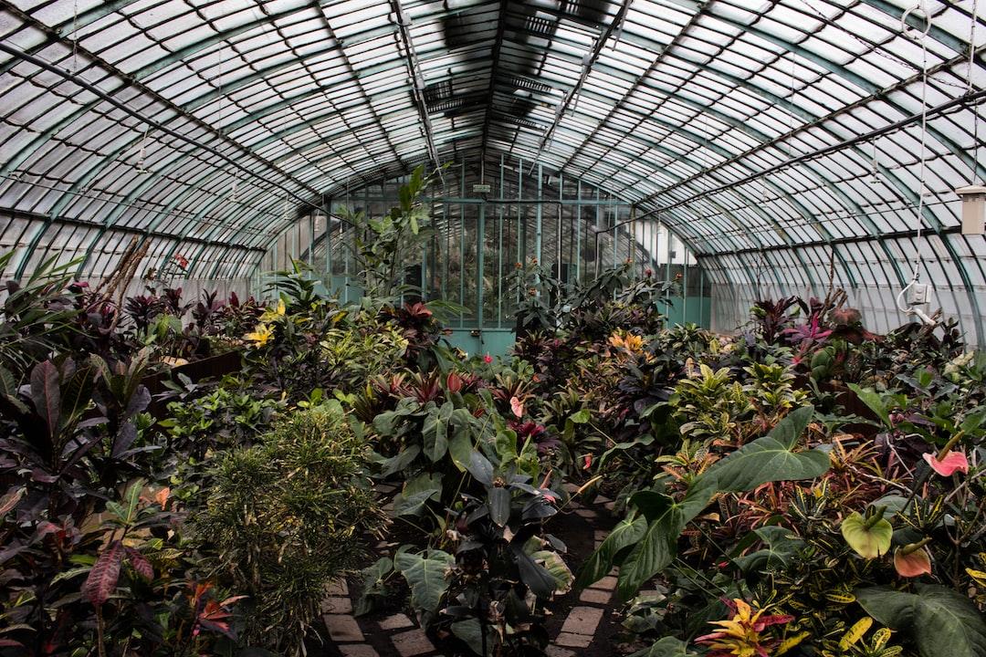 Jardins et Serres d'Auteuil Greenhouse in Paris