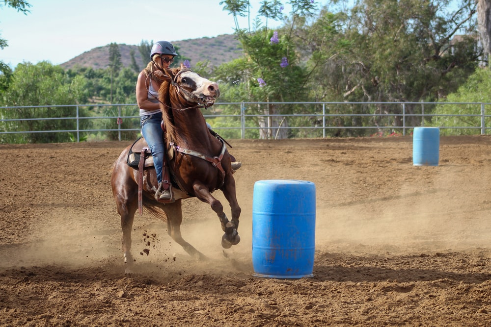 woman riding on brown horse