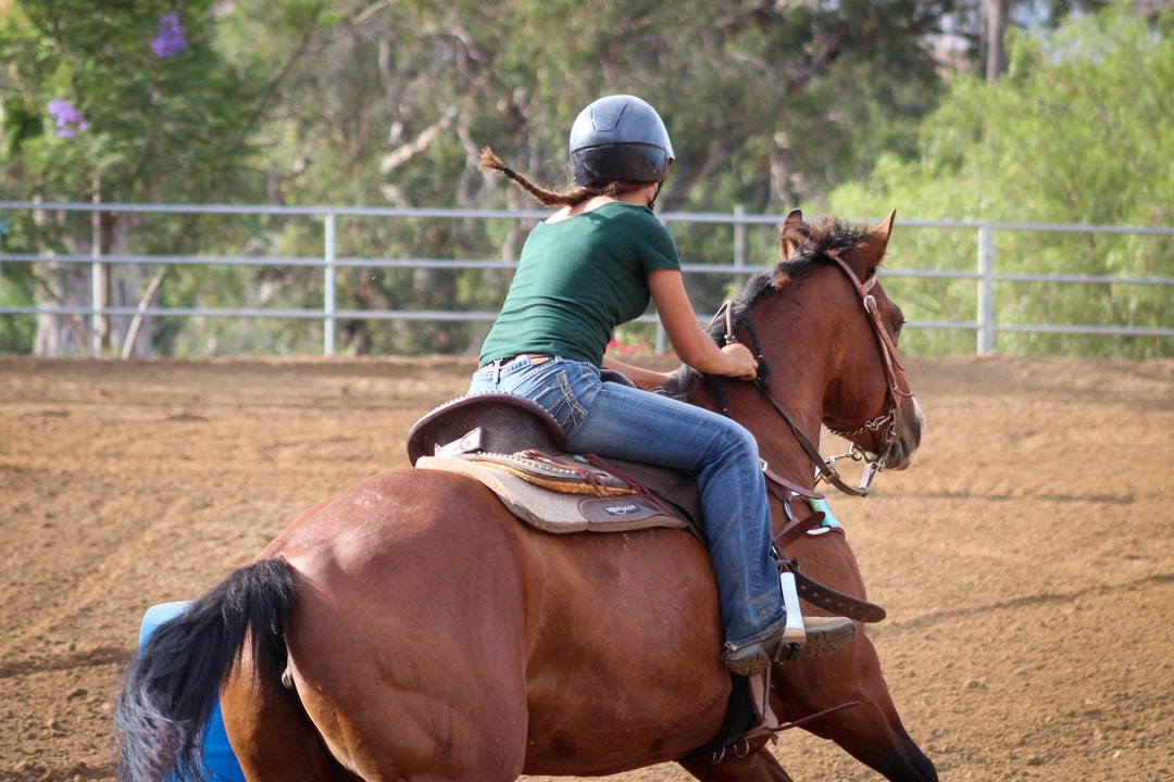 This is Olivia on Sweet Pea. They're coming out of the turn around barrel #2 and about to head to the last barrel. These two are fairly new to each other but are already working well as a team.