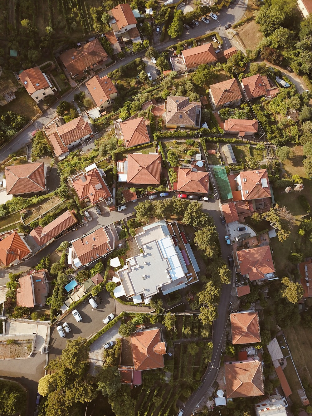 aerial photo of brown buildings and trees