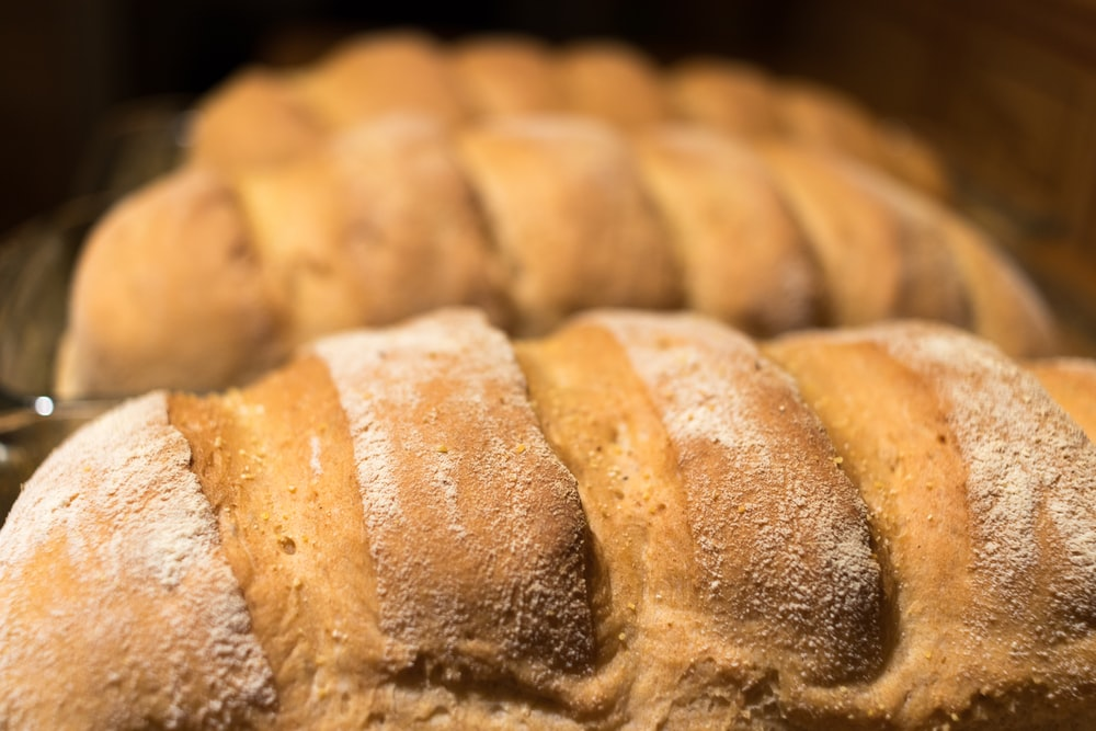close-up photo of bread