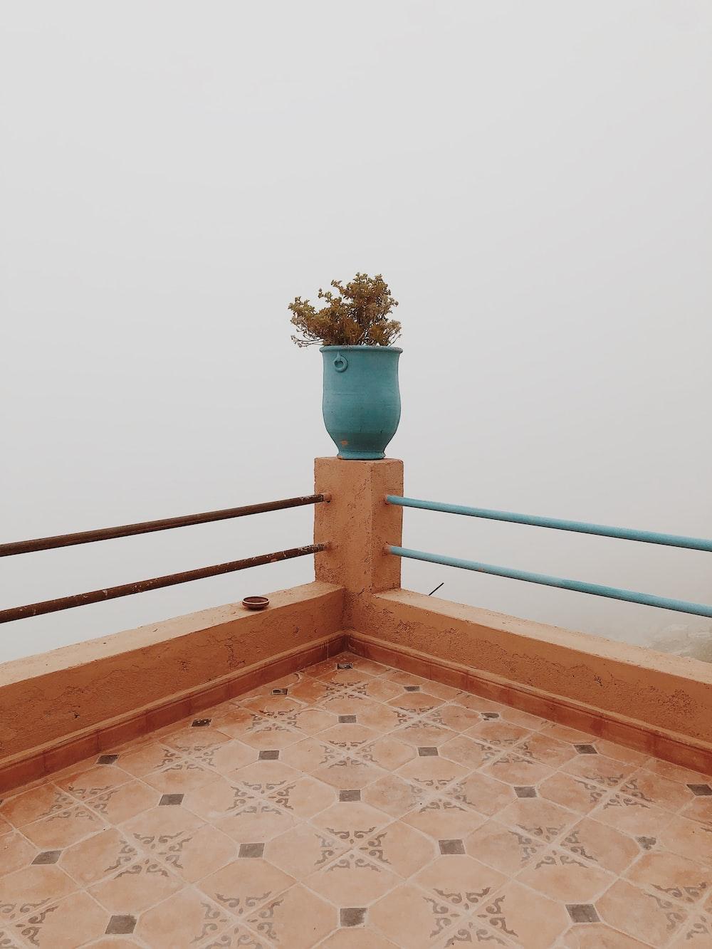 potted plant on corner railing