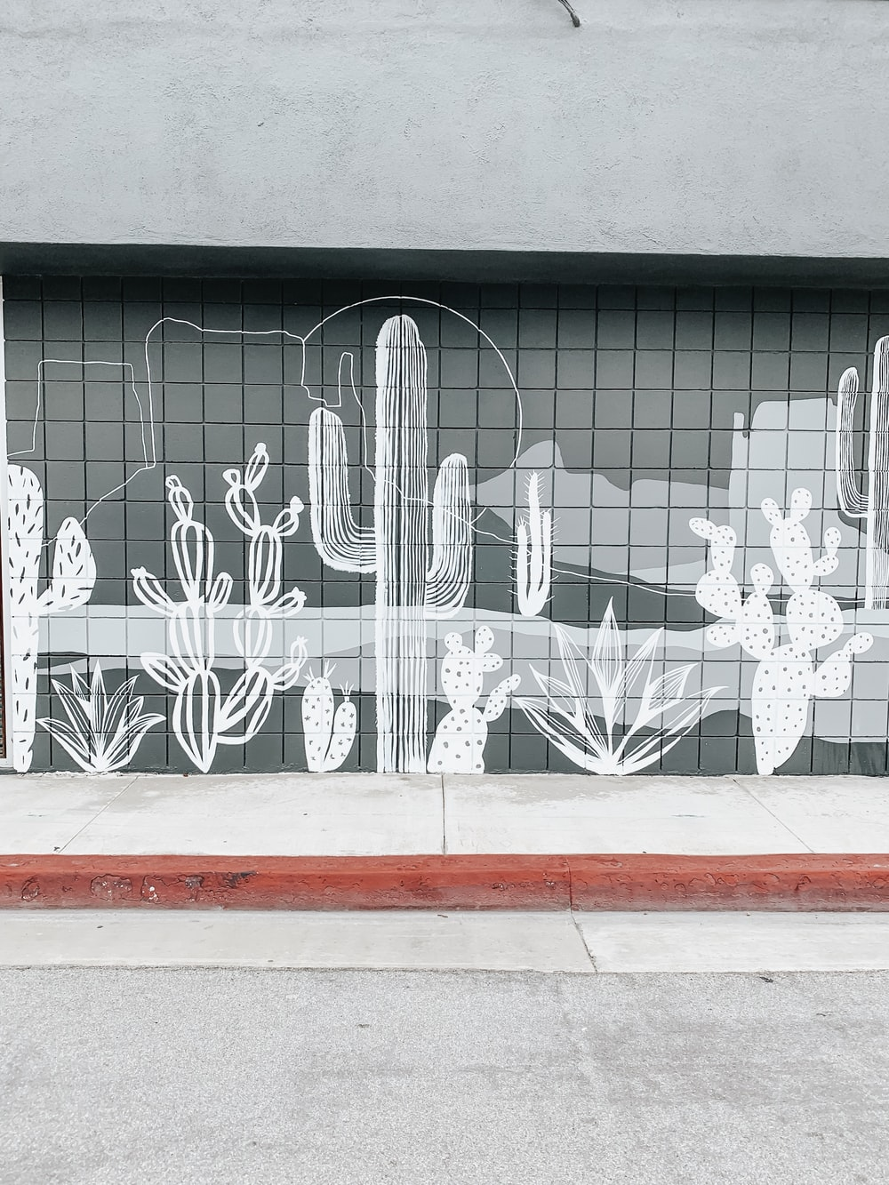 white cactus wall mural painting