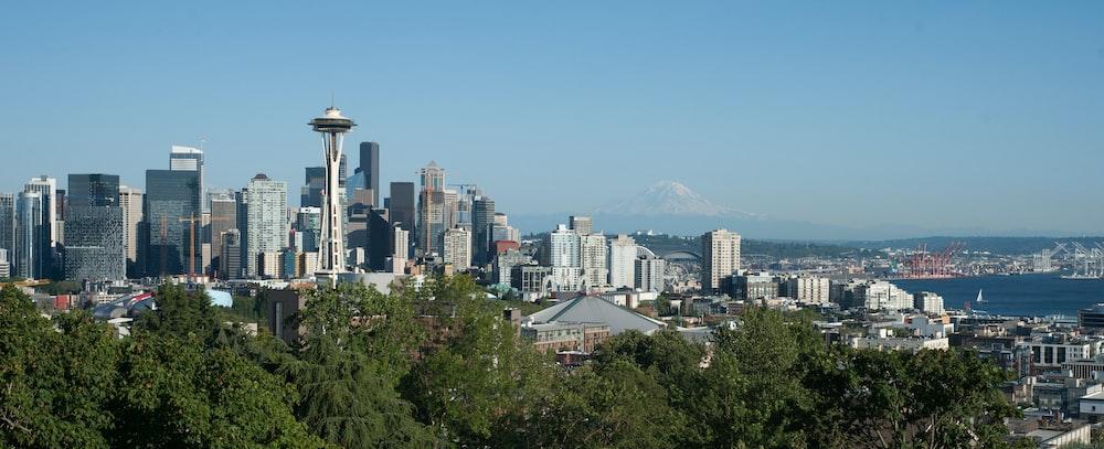 Seattle buildings under blue sky