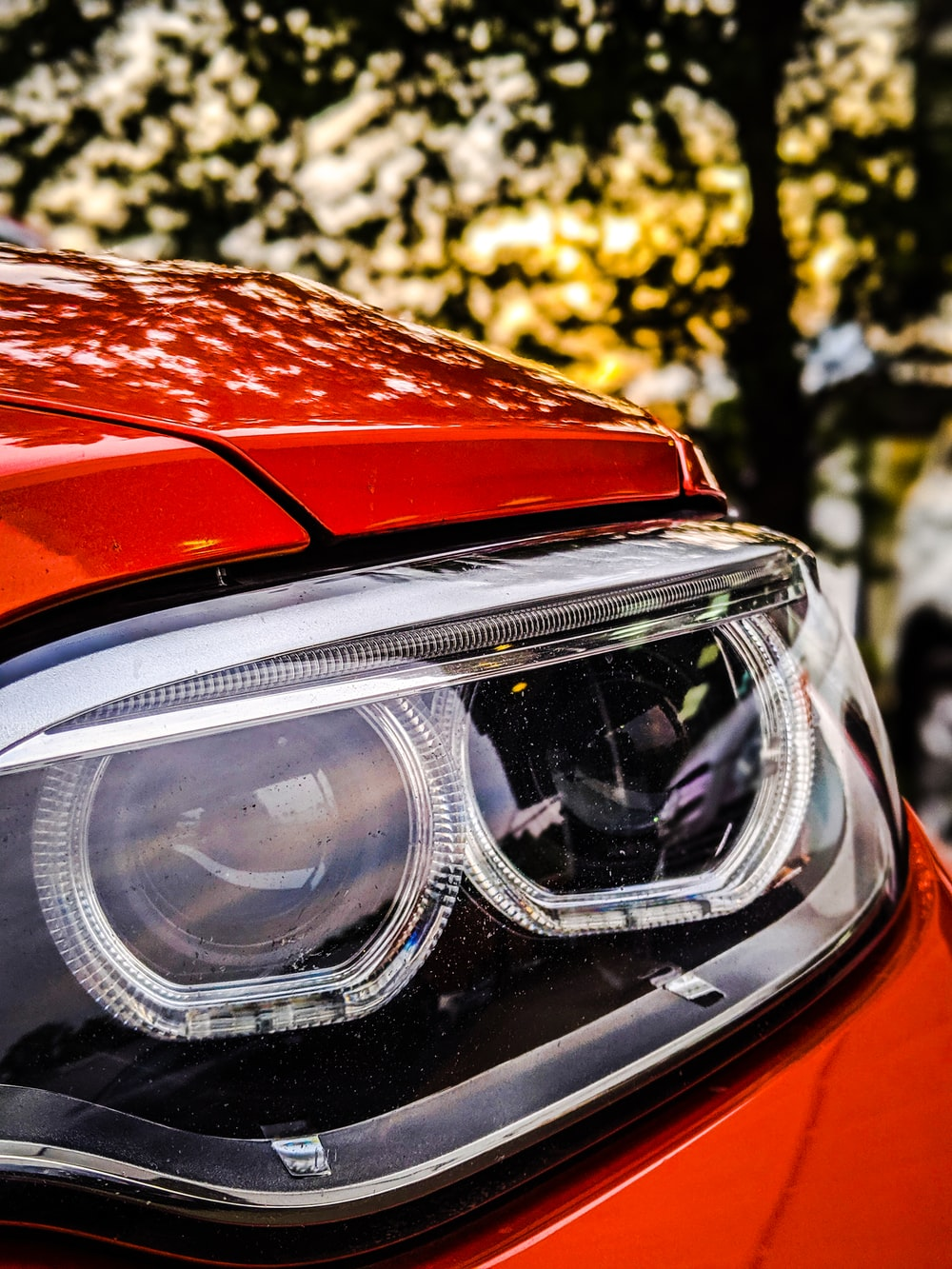 vehicle headlight in close up photo