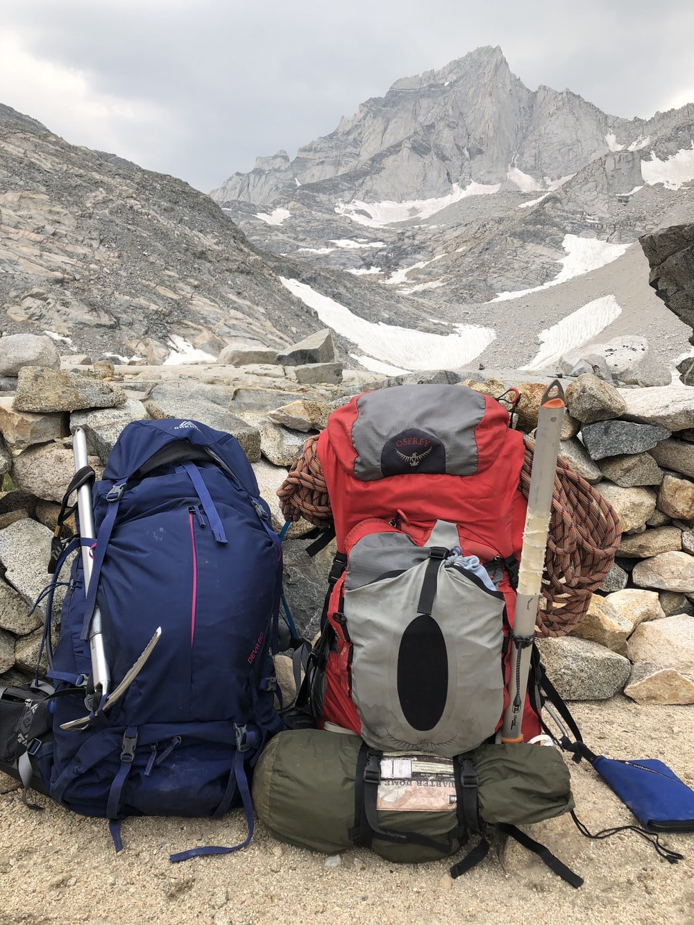 two blue and gray rucksack bags