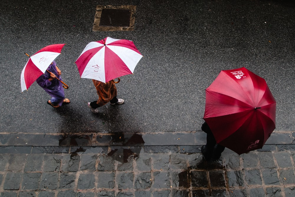 three people using umbrella walking in the street