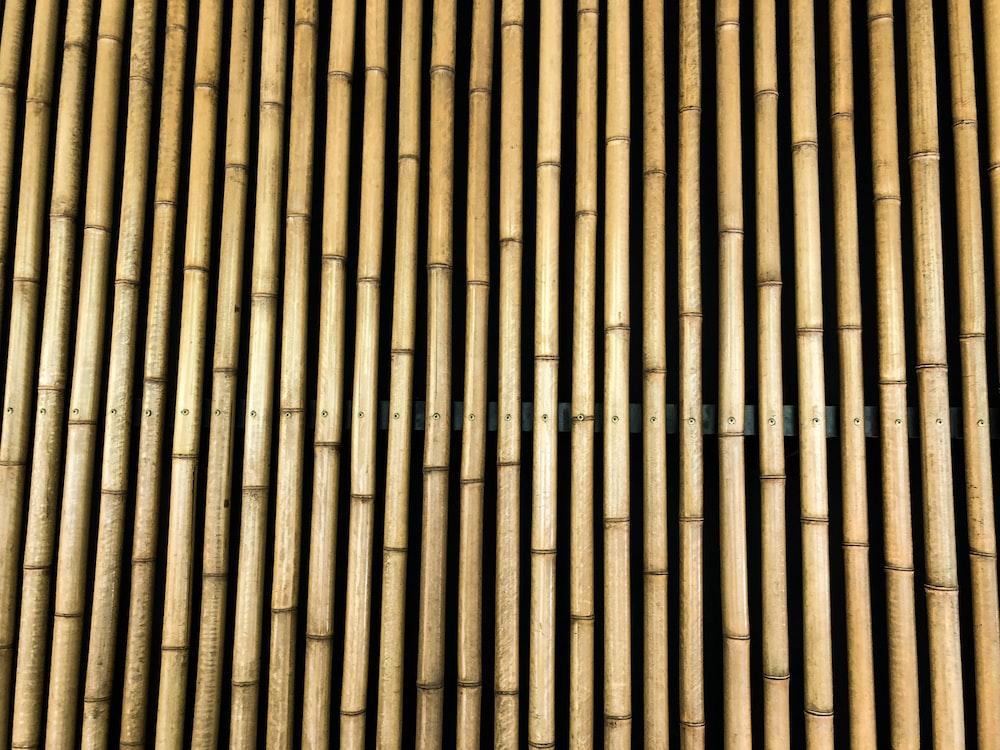 brown bamboos