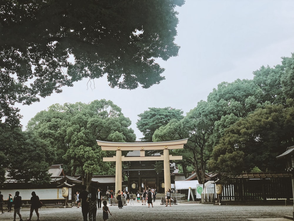 people near torii gate and trees during day