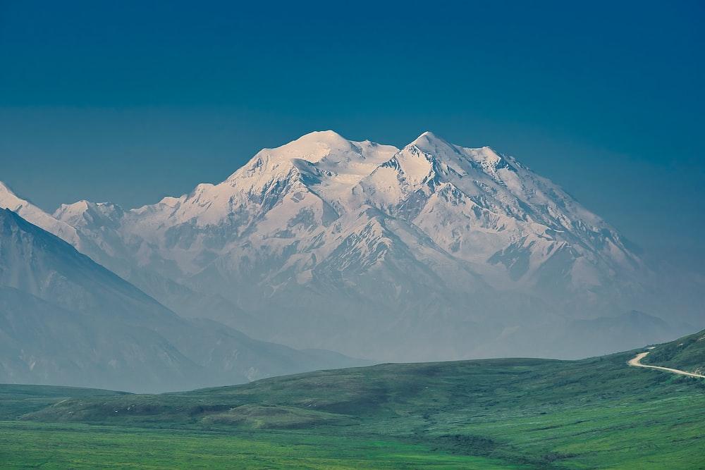 grass field and glacier mountain
