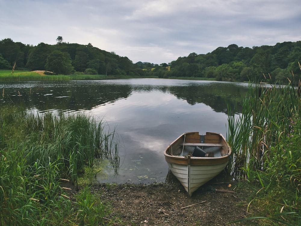 brown canoe docking on grasss