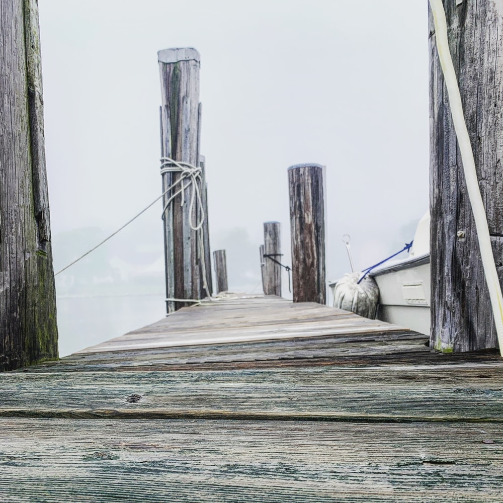 gray wooden boardwalk during daytime