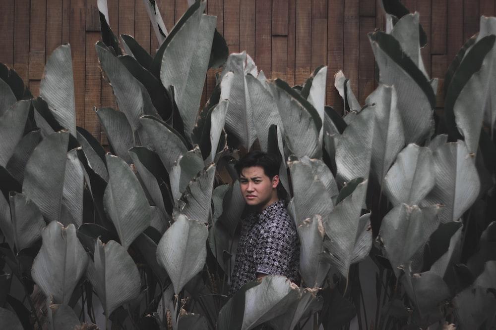 man standing between leaves