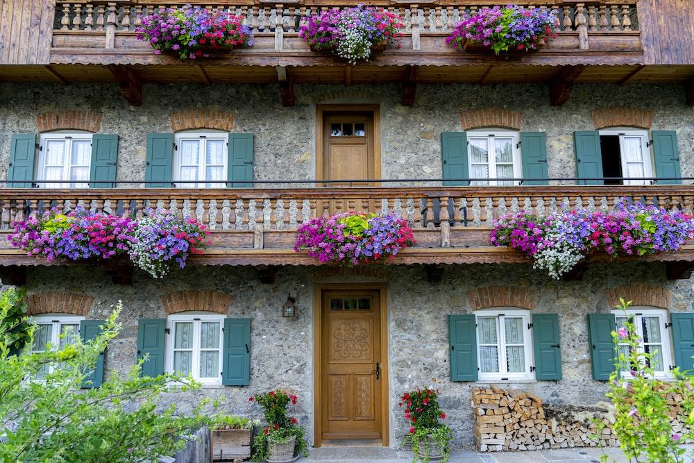 multicolored flowers in building balconies