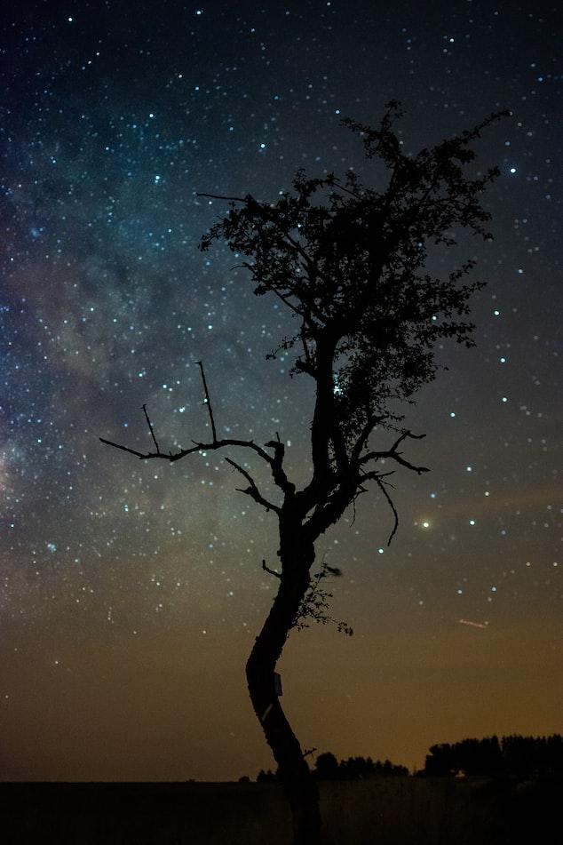 Звёздное небо и космос в картинках - Страница 6 Photo-1565098922755-0fe5558c039c?ixlib=rb-1.2
