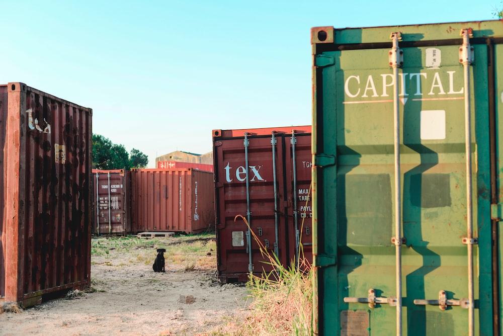 assorted container vans