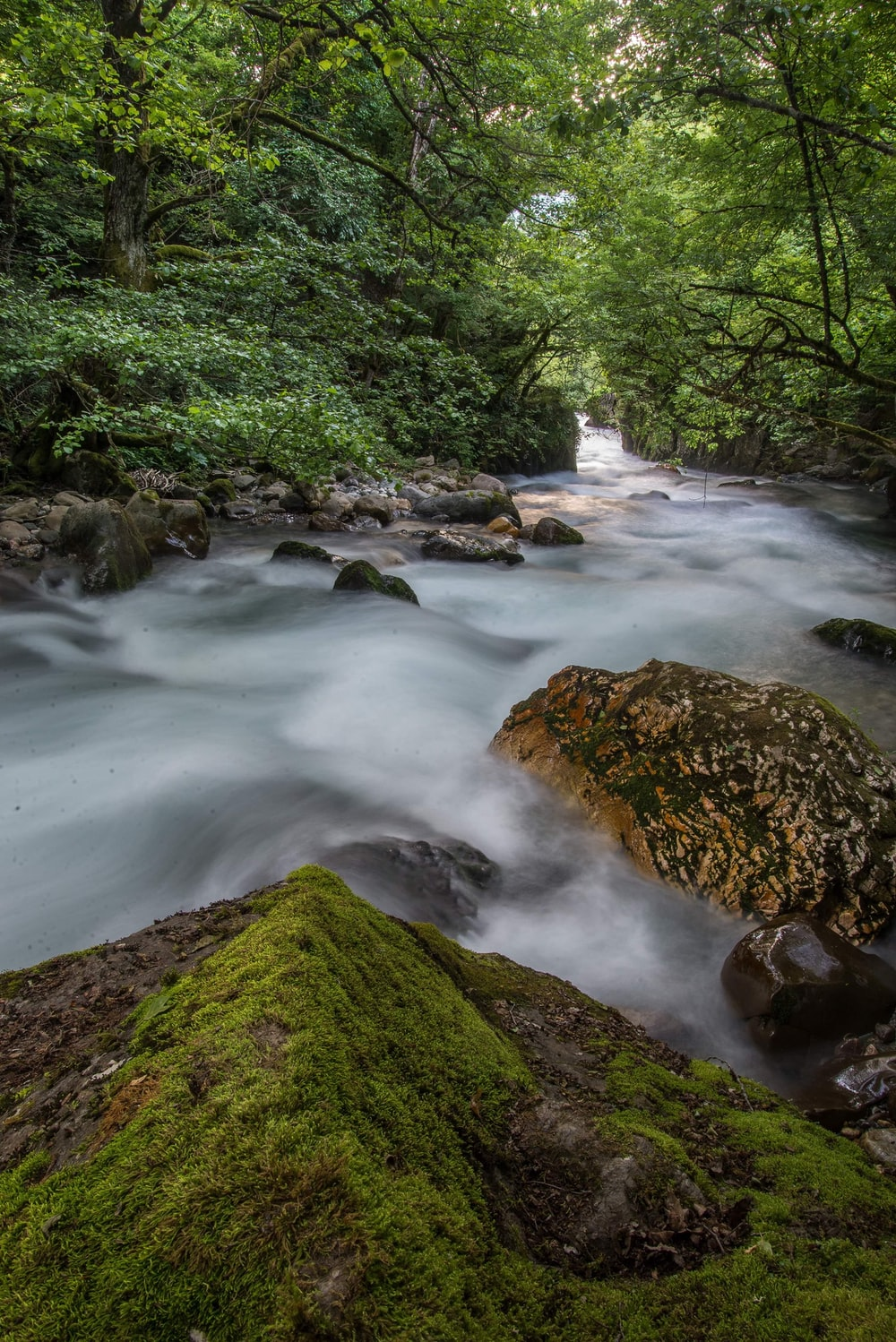 time-lapse photography of river near trees