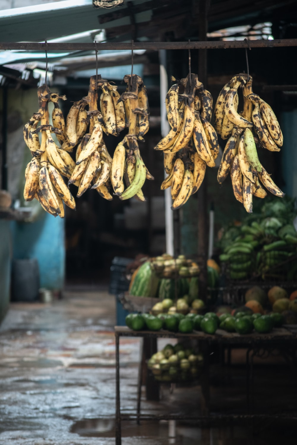 bunch of bananas hanging on canopy