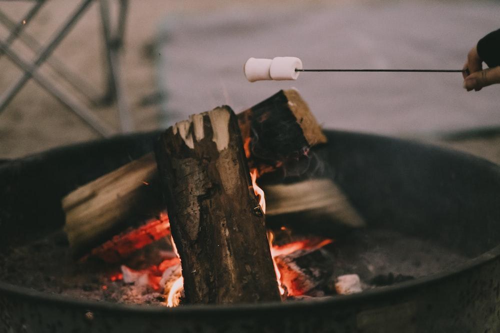 wood in fire