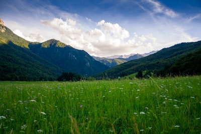 grass field and mountain ranges nature zoom background