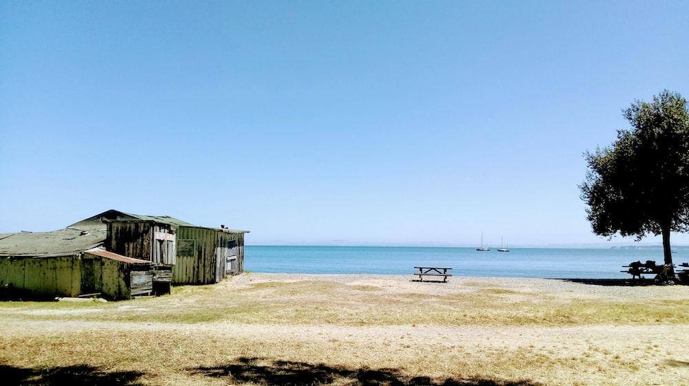 brown nipa hut near body of water