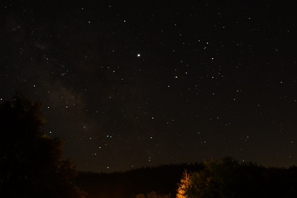 starry sky during nighttime